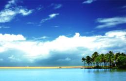 Munnar Thekkady Backwater Kovalam Beach Honeymoon