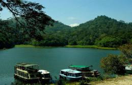 Hills, Wild Life Backwater Honeymoon Tour Package
