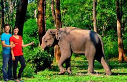Munnar Green Honeymoon, Munnar Honeymoon Package