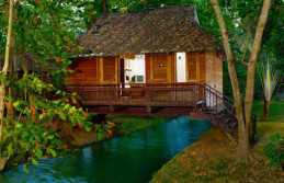 Munnar, Houseboat, Kovalam, Honeymoon Tour Package