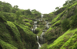 Wayanad Coorg honeymoon tour package