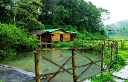 Wayanad Mysore Ooty  honeymoon tour package