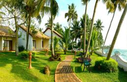 Kerala Honeymoon Package through water falls, hills, backwater
