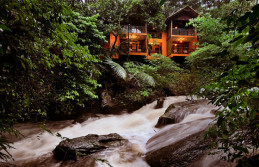 Wayanad – Vythiri  Honeymoon Package