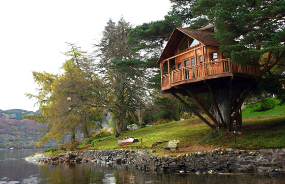 Honeymoon On Tree Houses